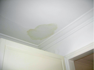 Water damage on the ceiling of a house in Fox River Grove, Illinois